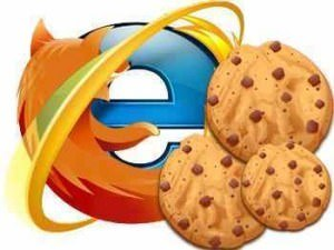 Browser Cookies Types and How does browser cookies work