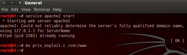 starting web server and moving exploit
