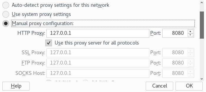 Browser Proxy setting