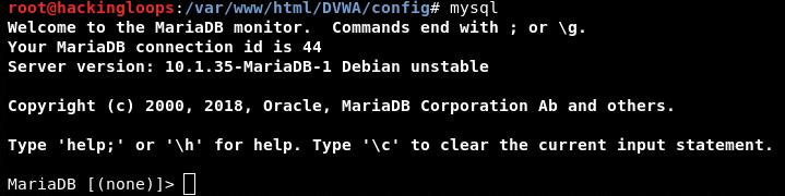 MariaDB database check