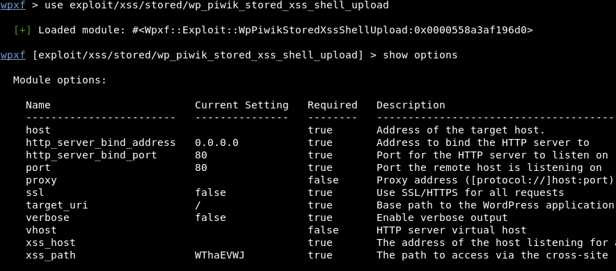 piwik exploit module and module options