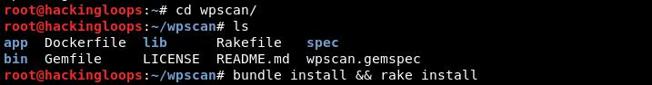 wpscan bundle install