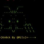 Knock vulnerability scanner