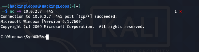 ncat connection successful